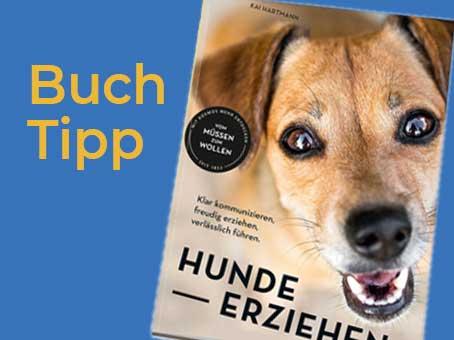 Buchtipp: Hunde erziehen